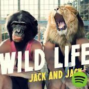 Wild Life, an album by Jack & Jack on Spotify