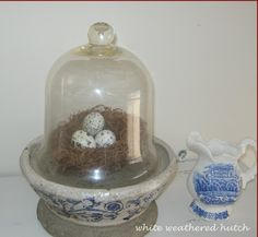 Cloche with nest and quail eggs - White Weathered Hutch