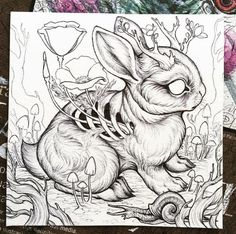 Working on a new little jackalope piece, a by painting, I'll be adding in watercolor layers next. Once completed I'll be adding this… Dark Art Drawings, Animal Drawings, Cool Drawings, Drawing Sketches, Drawing Ideas, Creepy Sketches, Funny Sketches, Drawing Animals, Tattoo Drawings