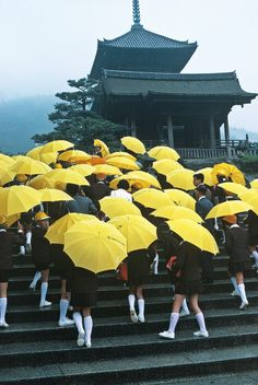 """ Japan, Kyoto. School children with umbrellas visiting a temple in the Kiyomizu hills. 1977. ©️️ Thomas Hoepker/Magnum Photos """