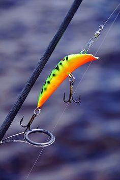 Canadian Wiggler - Key River Ontario Canada #photography #art #fishing #fishinglure #fisherman #angler