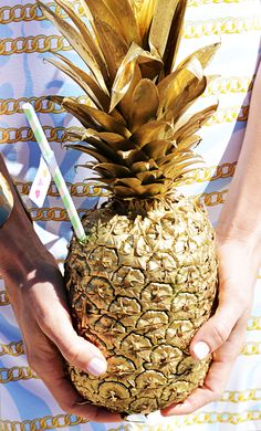 Gold Pineapple Palm