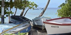 Little Good Harbour, St Lucy, Barbados: Capture the essence of island life right here in our glorious little fishing village, far removed from the hustle and bustle of big city life.   Come visit us at http://www.stlucybotanists.com.  #stlucybotanists #barbados