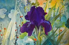 Iris painting fine art painting watercolor painting original large floral painting original watercolors dark purple iris art aqua orange, Teri Robertson original, Etsy