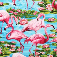 turquoise Timeless Treasures flamingo animal fabric USA 1