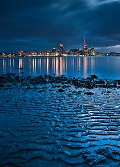Auckland skyline from a beach in Devonport. Auckland, New Zealand. Places Around The World, Oh The Places You'll Go, Places To Travel, Places To Visit, Around The Worlds, Vacation Places, New Zealand Beach, Auckland New Zealand, New Zealand Travel