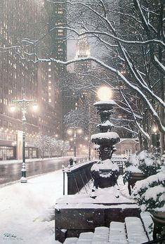 Winter's Night, New York City. [This is the first picture of New York City that I've really liked. I'm not a New York lover. Winter Szenen, Winter Christmas, Winter Night, Christmas Time, Christmas In New York, Snow Night, Winter Travel, Winter White, Snow White