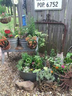 One area of my container gardening. If it's rusty, crusty, and/or dusty, the… One area of my container gardening. Garden Junk, Garden Yard Ideas, Lawn And Garden, Garden Projects, Easy Garden, Rustic Gardens, Outdoor Gardens, Rustic Garden Decor, Vintage Garden Decor