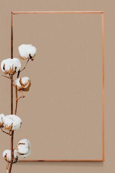 Dried cotton flower frame metallic design | premium image by rawpixel.com / sasi Space Phone Wallpaper, Framed Wallpaper, Flower Background Wallpaper, Flower Phone Wallpaper, Frame Background, Flower Backgrounds, Aesthetic Iphone Wallpaper, Wallpaper Backgrounds, Wallpapers