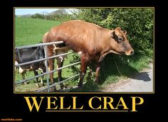 The cow jumped over the..... oh wait. And the dish ran away with the spoon.