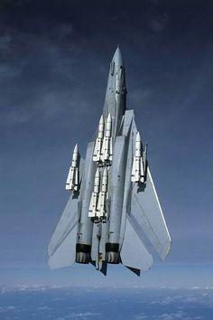 F-14 TOMCAT ARMADO CON MISILES PHOENIX,THANK YOU...