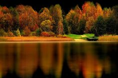 Autumn colours Photo by REgiNA — National Geographic Your Shot