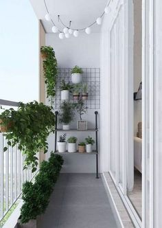 Small balcony ideas, balcony ideas apartment, cozy balcony design, outdoor balcony, balcony ideas on a budget Small Balcony Decor, Small Balcony Design, Small Balcony Garden, Balcony Plants, Outdoor Balcony, Terrace Garden, Balcony Railing, Balcony Gardening, Small Balconies