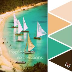 Color palette inspired by the beaches of Fiji!