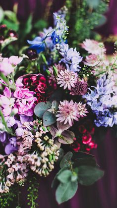 Wallpaper iPhone flowers