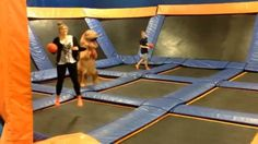 When your dodgeball skills are DINO-mite!  #PunIntended #Dino #Dodgeball #TRexProblems  Vid Cred: @tacitdirgeix