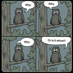 Who or Whom - Writers Write Tips Grammar Memes, Grammar And Punctuation, Writer Humor, Funny Owls, Free Novels, Writers Write, Funny Cartoons, Cartoon Humor, Teacher Humor