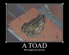 we thought you was a toad by =Tenukii on deviantART