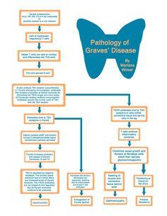 Graves' Disease flowchart