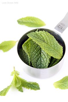 Mint Sugar by LoveGrowsWild.com 1/2 cup fresh mint leaves, 3/4 cup sugar. Mix in food processor until mint is finely ground.  Makes about 1 cup. Store in an airtight container for 1-2 days .