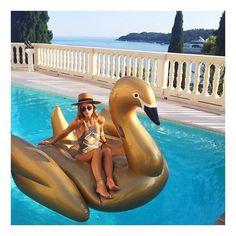 Golden Swan Floatie