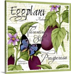 Botanical Eggplant, Joy Hall