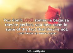 My Sisters Keeper, Jodi Picoult, Dont Love, Loving Someone, Daily Quotes, Quote Of The Day, Facts, Movie Posters, Life