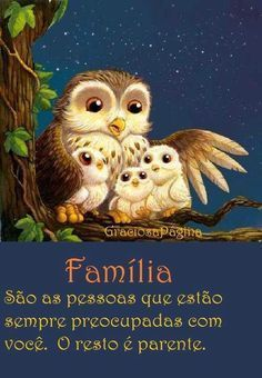 ...parente so os dentes.... Owl Family, Family Love, Motivational Phrases, Inspirational Quotes, Animals And Pets, Cute Animals, Peace Love And Understanding, Owl Pictures, Plaid Christmas