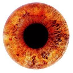 Orange pupil