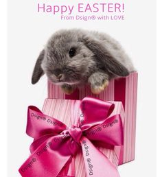 Happy Easter! From Dsign® with LOVE❤️