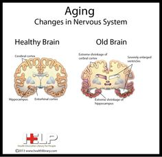 Aging Changes in Nervous System