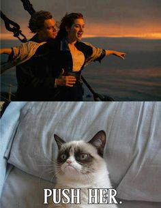 grumpy cat Somehow this made me laugh way harder than it should have. -- Grumpy Cat Watches Titanic by DoranBladefist on deviantA. Funny Animal Jokes, Cute Funny Animals, Funny Animal Pictures, Cute Baby Animals, Hilarious Pictures, Wild Animals, Grumpy Cat Quotes, Funny Grumpy Cat Memes, Funny Cats