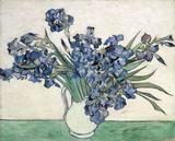 Irises, 1890 Art Print by Vincent Van Gogh Vincent Van Gogh, Art Van, Pick Art, Famous Artwork, Thing 1, Dutch Painters, Post Impressionism, Art Database, Japanese Prints