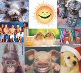 Vtipné foto a srandovní obrázky | KOMIK.CZ