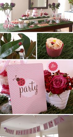 Lovely {ladybird} Garden Party (ladybugs)