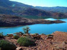 Happyknowledge vous fait découvrir 12 destinations de voyage au Maroc qu'il faut visiter pour les 12 mois de l'année.
