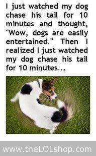 Dogs...bahahaha!