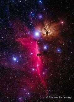 It looks like an astral dragon, methinks. ;)