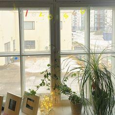 Tällaisia tulevaisuuden näkymiä työhuoneen ikkunasta. Seitinohut lumipeite Pajalassa Järvenpäässä. #futuremarja #korkkaakonttori #somefi #ensilumi  #tulevaisuus #yrittäjät #emalikukanyrittäjät #pajala