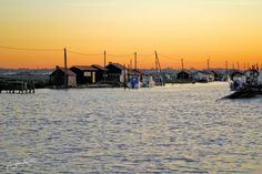 Ronce Les Bains - Charente Maritime avec sortir-loisirs.com