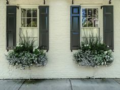 Charleston Window Boxes | Windows with shutters and window b… | Flickr