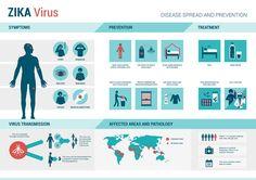 Zika-Info.jpg (JPEG Image, 1200×847 pixels)