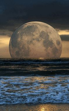 Full moon rising above the ocean is a captivating experience. Moon Photos, Moon Pictures, Nature Pictures, Moon Pics, Beautiful Moon, Beautiful Places, Beautiful Pictures, Stars Night, Shoot The Moon