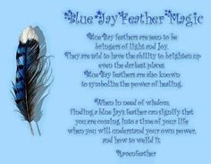 Blue Jay feathers are seen to be bringers of light and joy. They are said to have the ability to brighten up even the darkest places. Blue Jay feathers are also known to symbolize power of healing. Jay Feather, Feather Art, Feather Crafts, Bird Feathers, Feather Quotes, Blue Jay Meaning, Feather Meaning, Feather Symbolism, Bluebird Tattoo