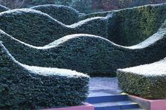 You could consider wave pruning the existing leylandii hedge.  Would soften the density and improve the feeling of space.