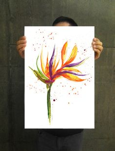 Bird of Paradise flower 2 Floral watercolor painting by colorZen, $35.00