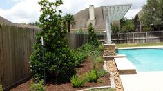 Pool-side landscaping with bull-rock edging and pergola shade cover.