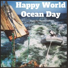 Happy World Ocean Day from the Muddymermaid Sustainability blog Animal Shelter, Animal Rescue, High School Soccer, Ocean Day, Oceans Of The World, Cool Baby Stuff, Pathways, Sustainability, Coast