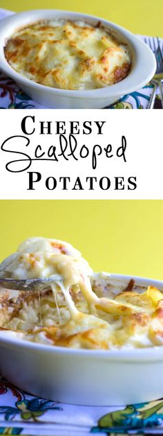 Cheesy Scalloped Potatoes - Erren's Kitchen - Comfort food at it's finest!