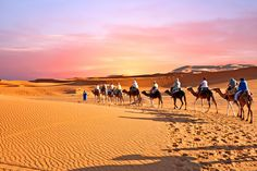 Discover stunning Morocco